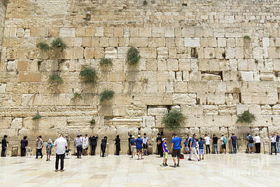 Photograph - Men Visit And Pray In The Men's Section At The Western Wall In T by William Kuta