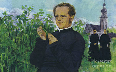 Painting - Mendel Studying In The Monastery by English School
