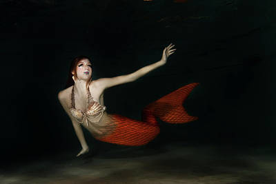 Photograph - Mermaid Underwater by Photos By Sonja
