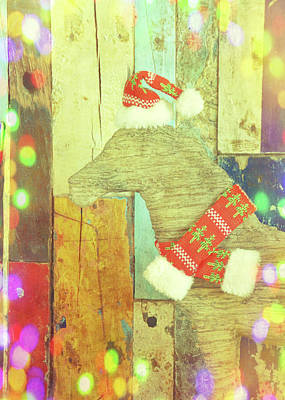 Photograph - Merry And Bright by Jamart Photography