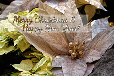 Photograph - Merry Christmas And Happy New Year Greeting Card by Tatiana Travelways