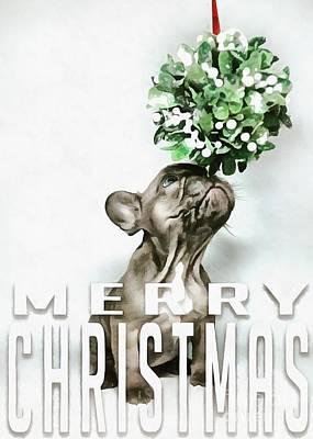 Digital Art - Merry Christmas Puppy Card by Edward Fielding