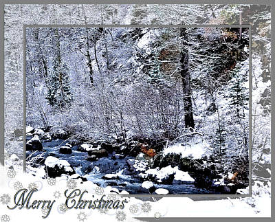 Digital Art - Merry Christmas  by Susan Kinney