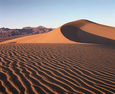 Mesquite Dunes 1 Art Print