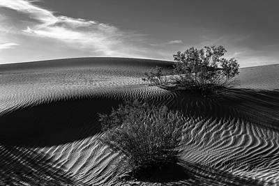 Photograph - Mesquite Flats Sand Dunes In Black And White by PhotoWorks By Don Hoekwater