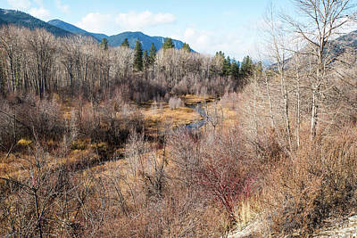 Photograph - Methow River Brush by Tom Cochran
