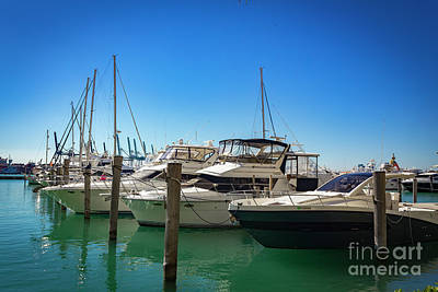 Photograph - Miami Beach Marina 4523 by Carlos Diaz
