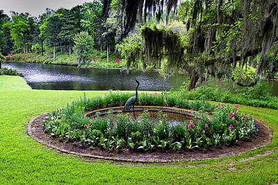 Photograph - Middleton Gardens Mill Pond by Bill Barber