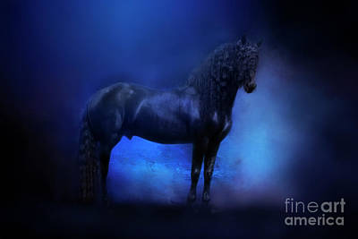 Photograph - Midnight Friesian by Michelle Wrighton