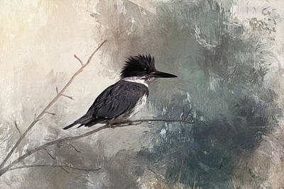 Belted Kingfisher Wall Art - Photograph - Mighty Little Fisher by Donna Kennedy