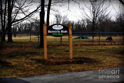 Frank J Casella Royalty-Free and Rights-Managed Images - Mild Winter at the Dog Park by Frank J Casella