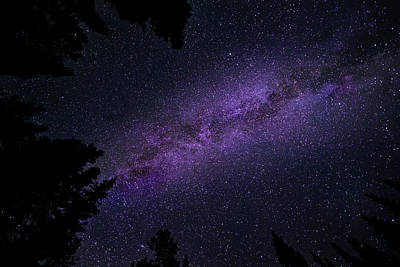 Photograph - Milky Way On A Starry Starry Night by Philip Rispin
