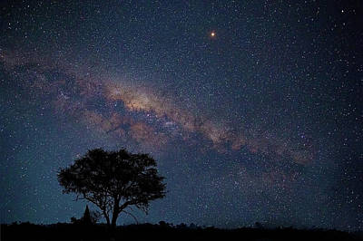 Photograph - Milky Way Over Africa by John Rodrigues