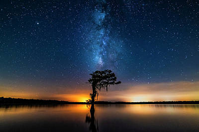 Photograph - Milky Way Swamp by Andy Crawford