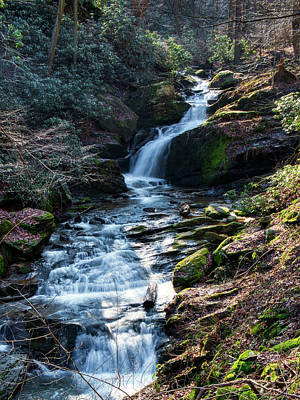 Photograph - Mill Creek Falls  by Mark Dodd