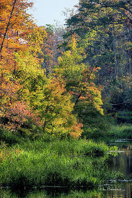 Photograph - Milltail Creek Autumn 3297 by Dan Beauvais