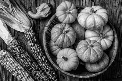 Photograph - Mimi Pumpkins In Wicker Bowl Black And White by Garry Gay