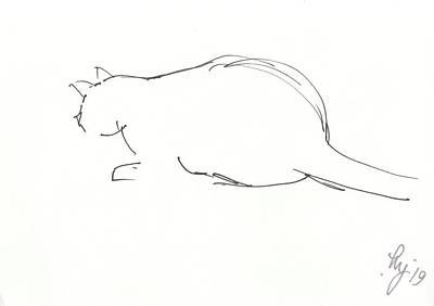 Drawing - Minimal Outline Drawing Of A Cat Crouching by Mike Jory