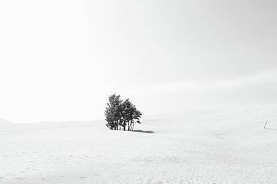 Photograph - Minimum Landscape by Dan Sproul