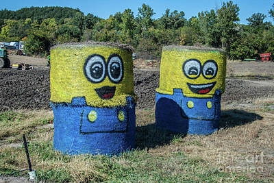 Photograph - Minions by Tony Baca