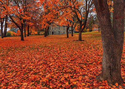 Photograph - Minnehaha Autumn by Mark Kiver