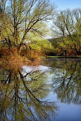 Photograph - Mirror Reflection by Christina Rollo
