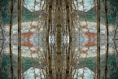 Symmetry Photograph - Mirrored Trees In Front Of Lake By by Silvia Otte
