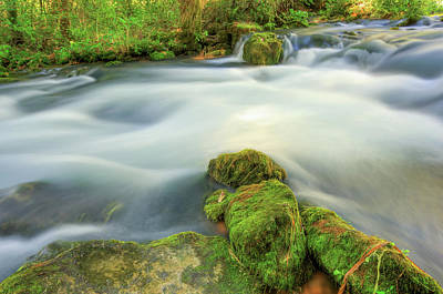Photograph - Missouri Mossy River Landscape by Gregory Ballos