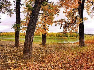 Photograph - Missouri River Autumn by Leland D Howard