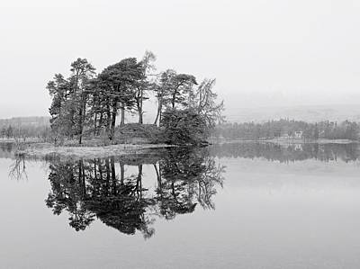 Photograph - Mist And Trees by Stephen Taylor