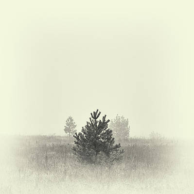 Photograph - Mist In The Valley. Horytsya, 2018. by Andriy Maykovskyi