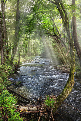 Photograph - Mists On The Mountain Rapids by Debra and Dave Vanderlaan