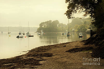Photograph - Misty Morning At Restronguet Weir by Terri Waters
