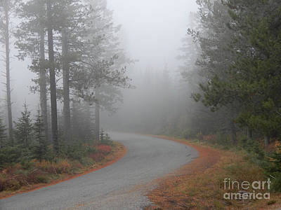 Photograph - Misty Mountain Road by Carol Groenen