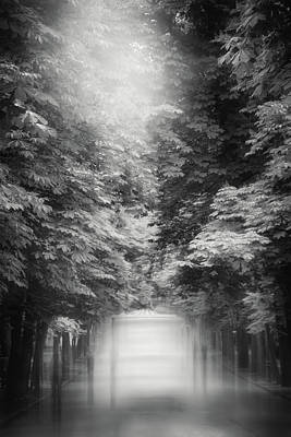 Little Mosters - Misty Stroll Retiro Park Madrid Black and White by Carol Japp