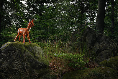 Photograph - Model Of A Young Deer In Forest by Gregor Schuster