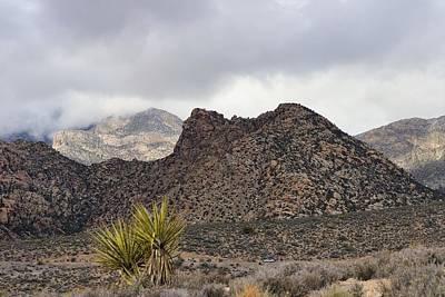 Photograph - Mojave Desert by Sagittarius Viking