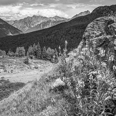 Photograph - Molas Pass Mountain Landscape - Colorado San Juan Mountains - Monochrome by Gregory Ballos