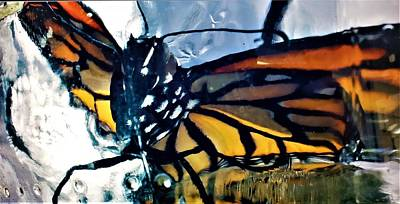 Colorful People Abstract Royalty Free Images - Monarch Butterfly Royalty-Free Image by Rob Hans