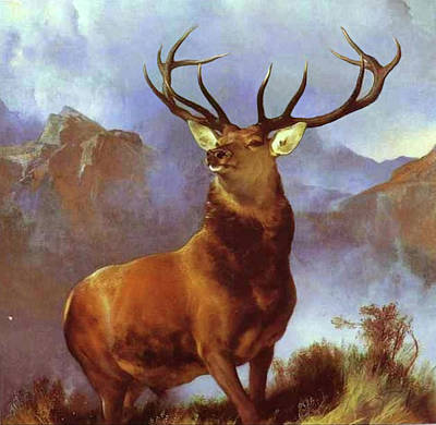 Painting - Monarch Of The Glen  by Edwin Henry Landseer
