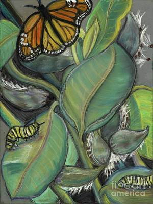 Pastel - Monarch Series I by Ann Hoff