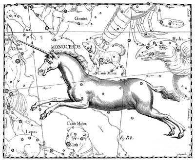 Drawing - Monoceros, Constellation Of The Unicorn by Johann Hevelius