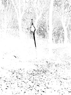 Photograph - Monochromatic Forest Trees In Highgate Woods 60 by Artist Dot