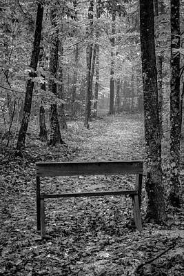 Photograph - Monotone Rest by David Heilman