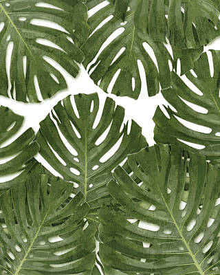 Royalty-Free and Rights-Managed Images - Monstera Leaf Pattern - Green - Tropical, Botanical design - Modern, Minimal Decor by Studio Grafiikka