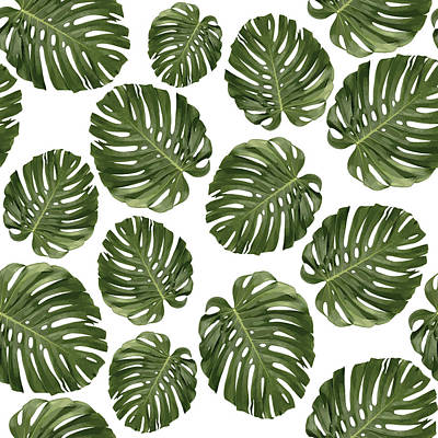 Royalty-Free and Rights-Managed Images - Monstera Leaf Pattern - Tropical Leaf Pattern - Green - Tropical, Botanical - Modern, Minimal - 1 by Studio Grafiikka