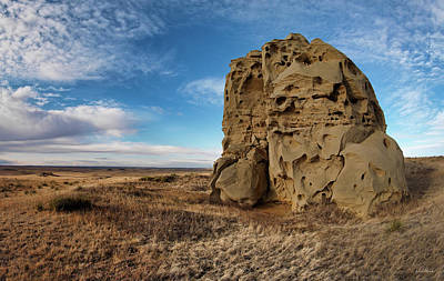 Photograph - Montana Medicine Rocks by Leland D Howard
