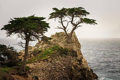 Photograph - Monterey Peninsula II Color by David Gordon