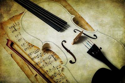 Photograph - Moody White Violin by Garry Gay