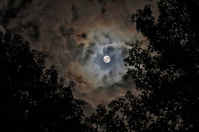 Photograph - Moon And Clouds 2 by Allin Sorenson
